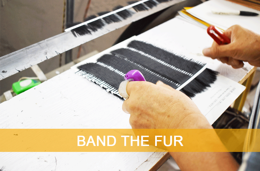 BAND-THE-FUR