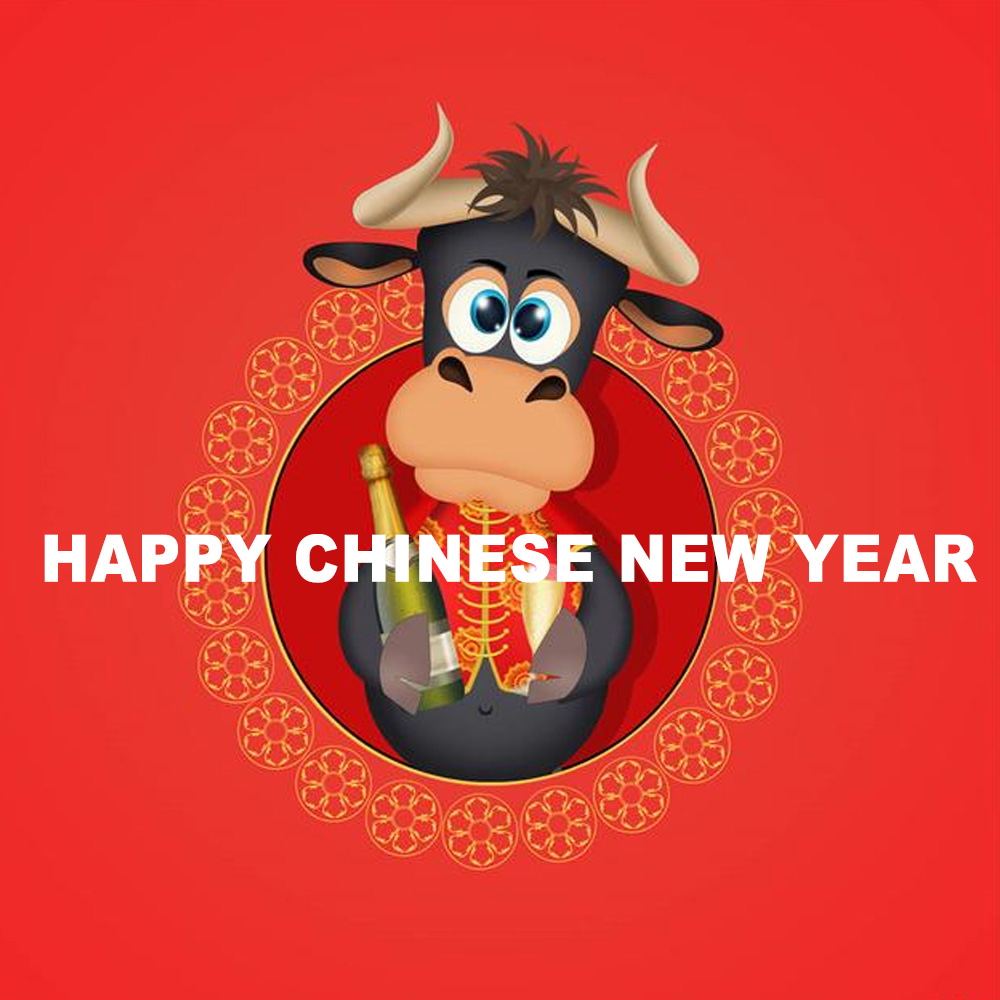Chinese New Year Holidays Notice